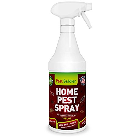 4. Pest Soldier Home Pest Spray