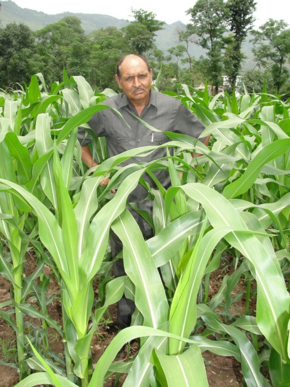 Bansi Lal, maize farmer in J&K