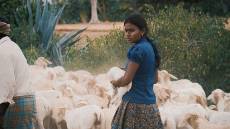 Thithi Still 3