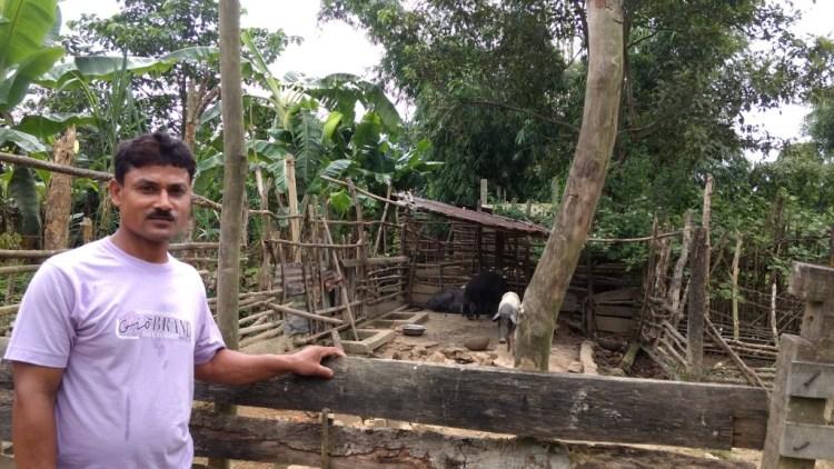 Jiten Dutta posing before his pig sty. Credit: Sangeeta Barooah Pisharoty