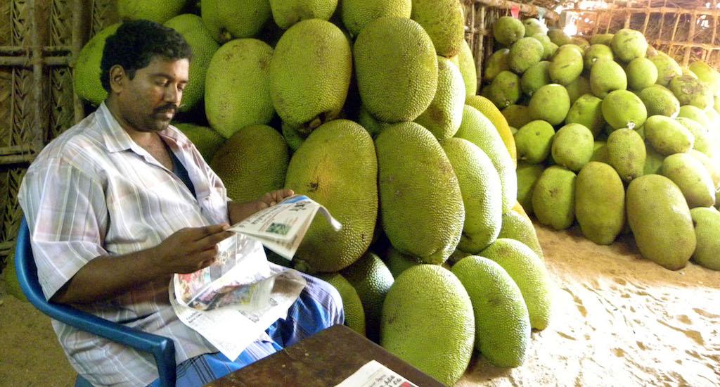 A shopkeeper selling jackfruit. Credit: Sri Padre / Adhike Patrike