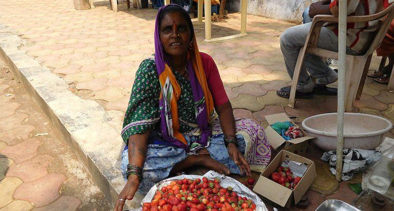 Howsaben Waghmare selling strawberries at Saputara. Credit: Gajanan Khergamke