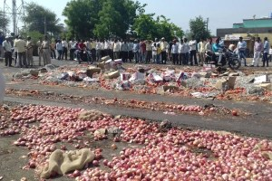 Farmers protested and threw away their onion harvest as prices crashed. Credit: Atul Deulgaonkar