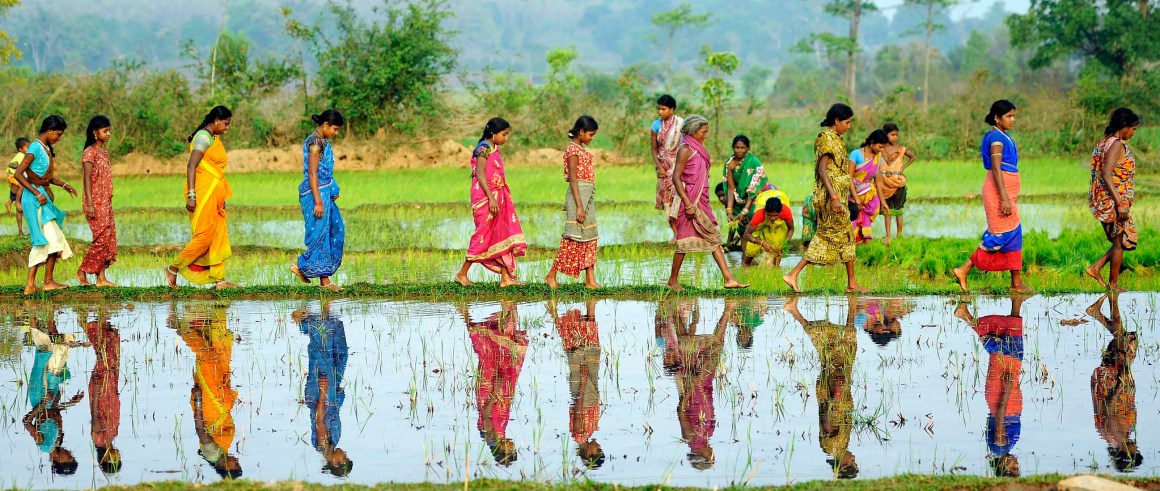 Women working on paddy field in Odisha. Credit: Trocaire/Justin Kernoghan/Flickr CC BY 2.0