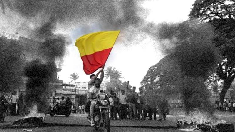 Pro-Kannada protestors flying the unofficial Karnataka flag. Credit: PTI/Files