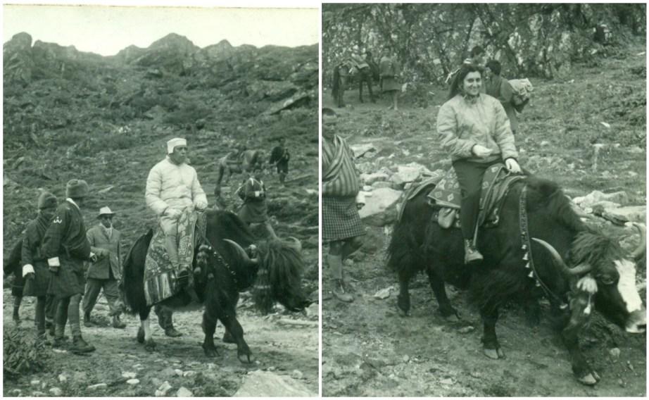 Nehru and Indira Gandhi on yaks