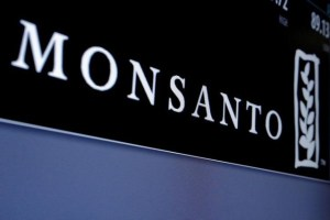 Monsanto logo is displayed on a screen where the stock is traded on the floor of the New York Stock Exchange (NYSE) in New York City, U.S. on May 9, 2016. Credit: Reuters