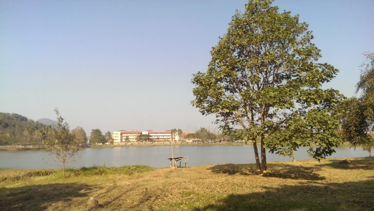 IIT Guwahati. Credit: The Life of Science