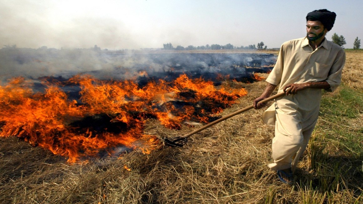 An Indian farmer burns paddy husks after a harvest in the northern Indian city of Chandigarh, October 21, 2003. India expects a bumper grains and oilseeds crop this winter season following the best monsoon in five years, but analysts said the government's outlook seemed too optimistic. REUTERS/Kamal Kishore AH/DL - RP4DRHYYCIAA