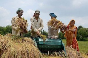 Farmers-Agricuture-India-PTI