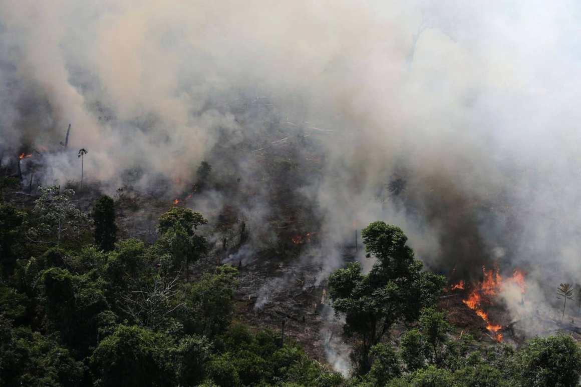अमेज़न के जंगलों में लगी आग. (फोटो: रॉयटर्स)