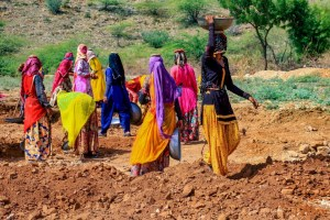 Ajmer: Women labourers work at a site under the Mahatma Gandhi National Rural Employment Guarantee Act (MGNREGA) on the outskirts of Ajmer, Sunday, June 7, 2020. (PTI Photo) (PTI07-06-2020 000039B)