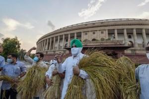 कृषि विधेयक के विरोध में संसद भवन के बाहर कांग्रेस  सांसद गुरजीत सिंह आहूजा. (फोटो: पीटीआई)