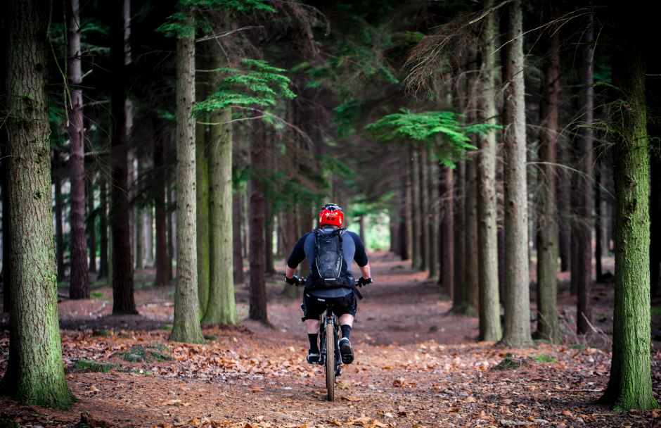 Riding Into Rosh Hashanah: What Bike Riding Has Taught Me About Life