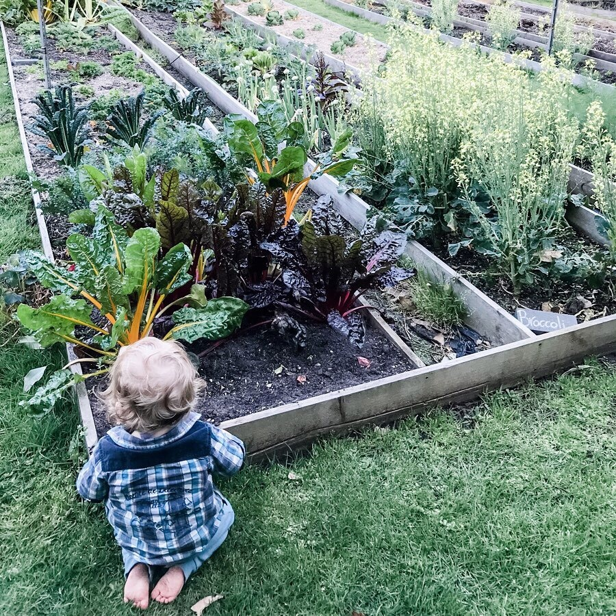 Green Parenting With Emma Gibbs