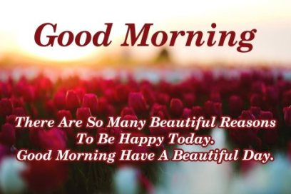 beautiful-be-happy-good-morning-quotes-with-flowers-wallpapers-images-text-messages-free-download