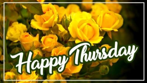 best-happy-thursday-yellow-flowers-wishing-greetings-wishes-pics-images-pictures-wallpaper-free-download