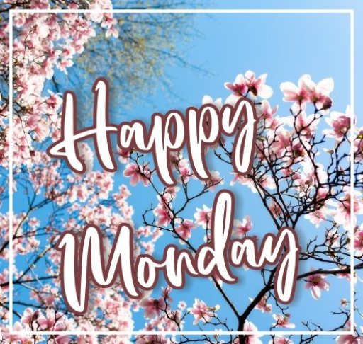 happy-monday-hd-images-wishes-greetings-wishing-pictures-free-download
