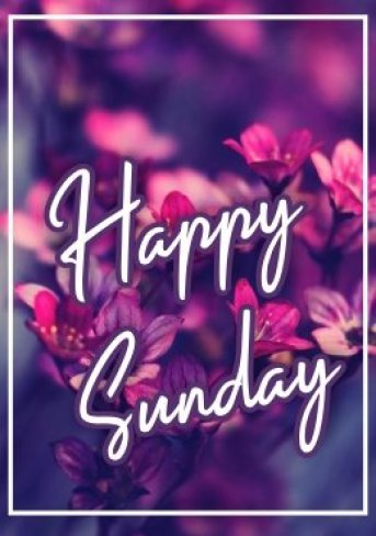 happy-sunday-hd-images-wishes-greetings-wishing-pictures-free-download