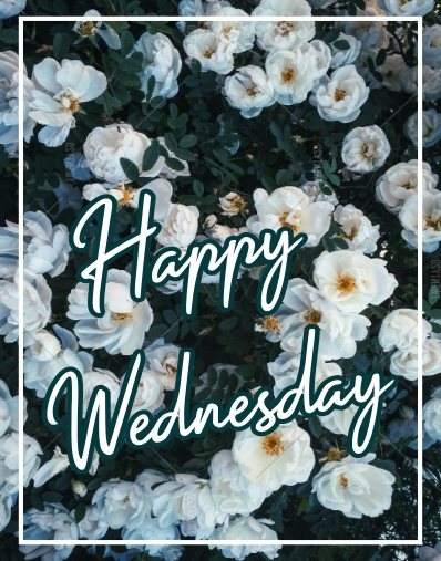 special-happy-wednesday-flowers-wishing-greetings-images-wallpapers-pictures-free-download