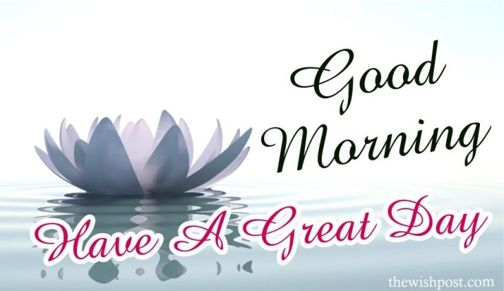 amazing-best-good-morning-have-a-great-day-white-lotus-hd-images-wishes-wallpapers-wishing-pics-greeting-cards-for-facebook-whatsapp-status