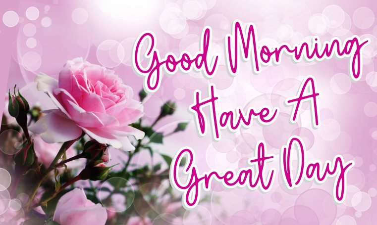 elegant-good-morning-have-a-great-day-with-pink-flowers-images-wallpaper-wishing-pics-greeting-cards-pictures-for-friends-free-download