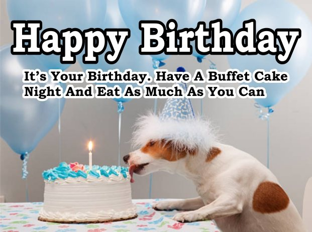 funny-happy-birthday-dog-images-wishes-greeting-cards-with-candles-cake-balloons-wallpaper-for-funny-friends-free-download