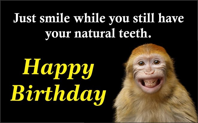funny-monkey-smile-happy-birthday-pics-wishing-images-greetings-wishes-pictures-greeting-cards-pics-for-friend-facebook-whatsapp-status