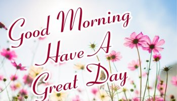 special-good-morning-have-a-great-day-with-flowers-sky-images-wallpaper-wishing-pics-greeting-cards-pictures-for-friends