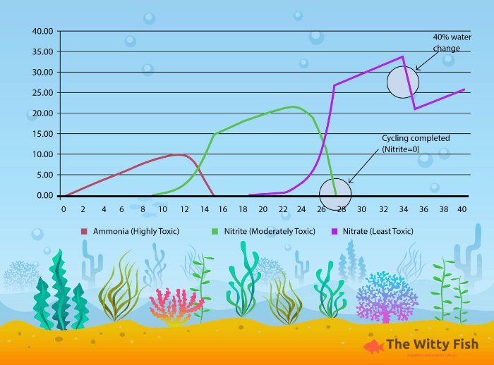 Nitrogen Graph with watermark
