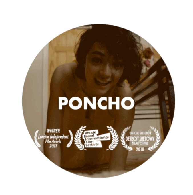 Poncho circle 1