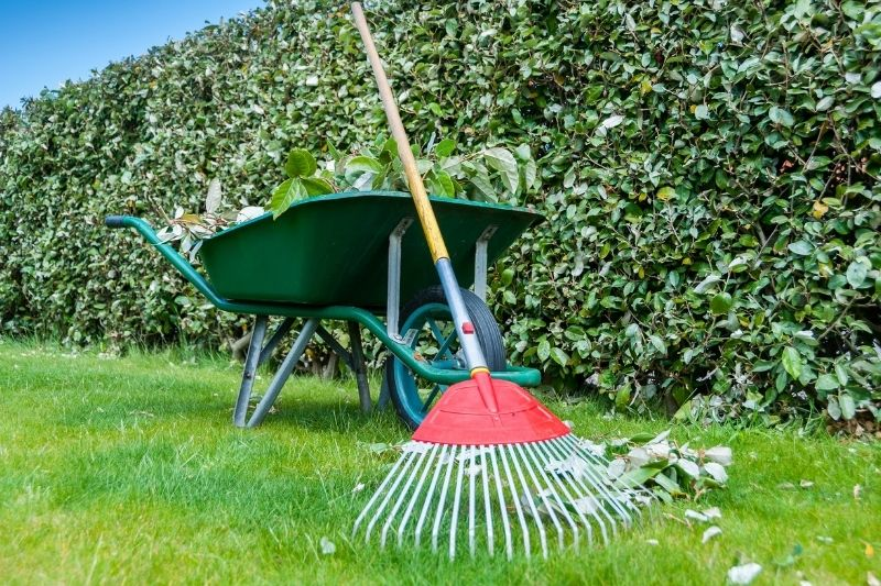 home improvemnt idea - spruce up your lawn