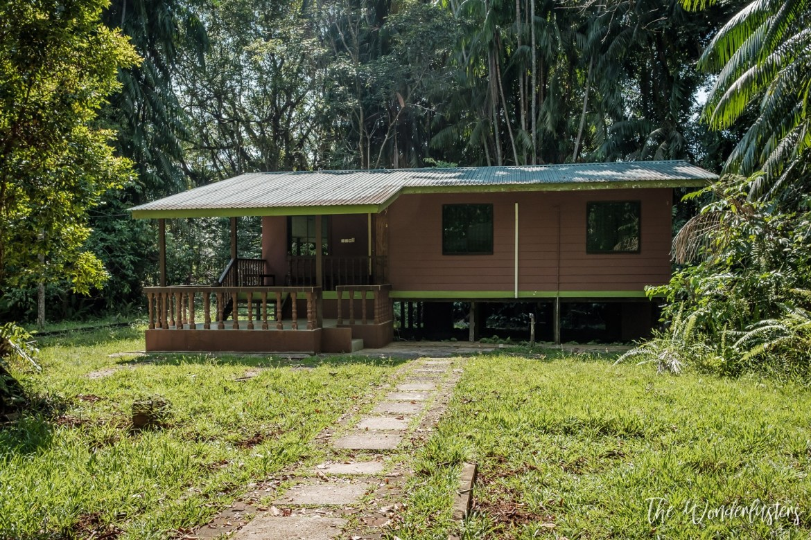 Our bungalow at Bako National Park