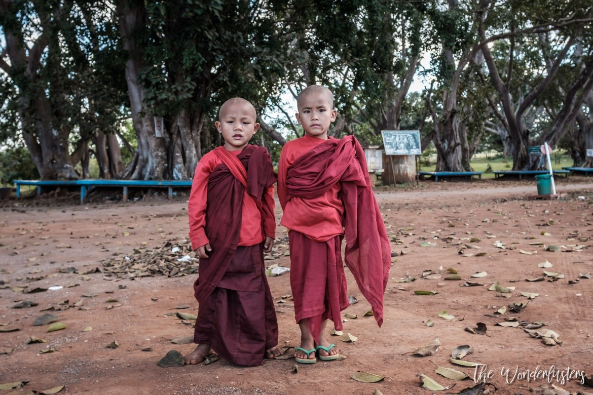 Baby Monks