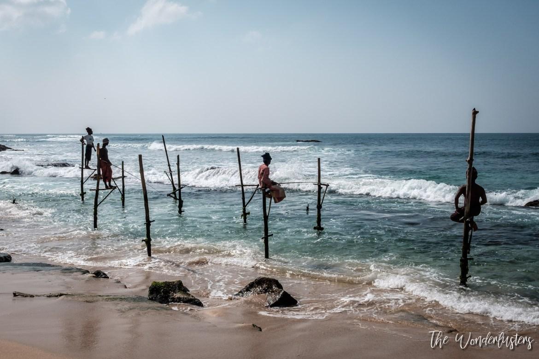 Sri Lanka Stilt Fishermen