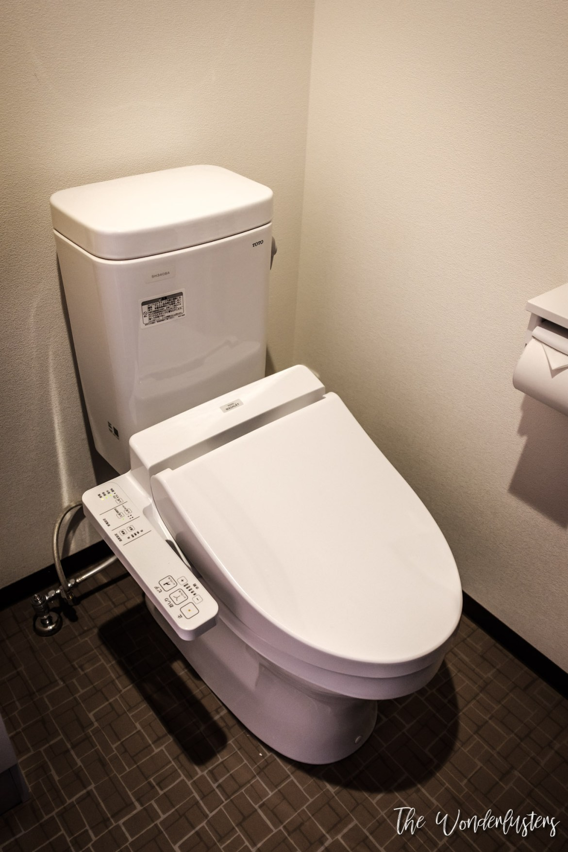 A Japanese Toilet