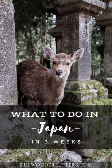 Japan-pin-1