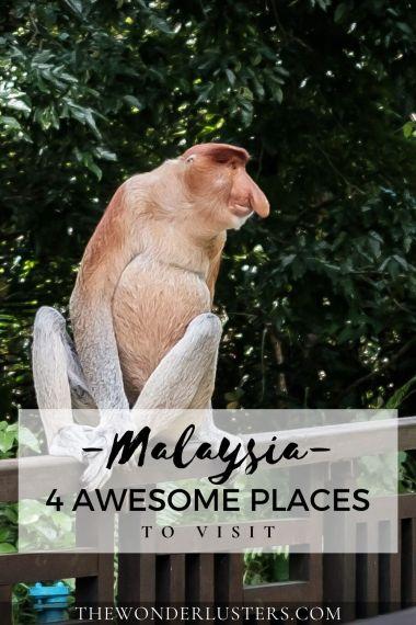 malaysia-pin-1