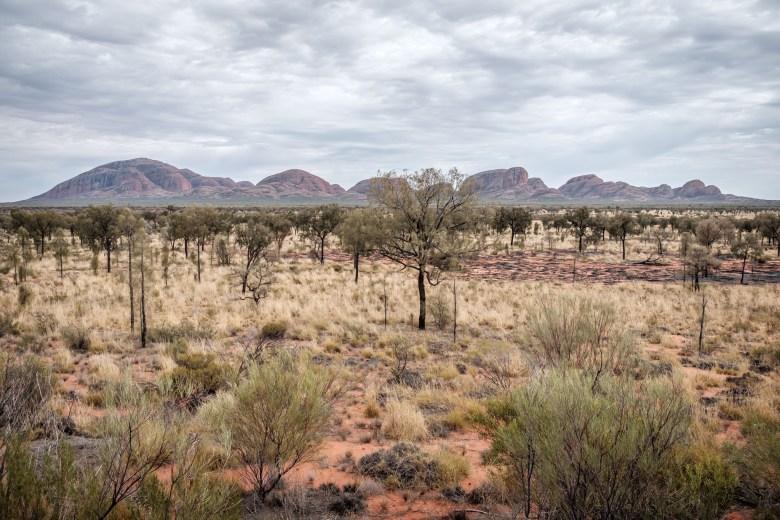 Australia Uluru 31