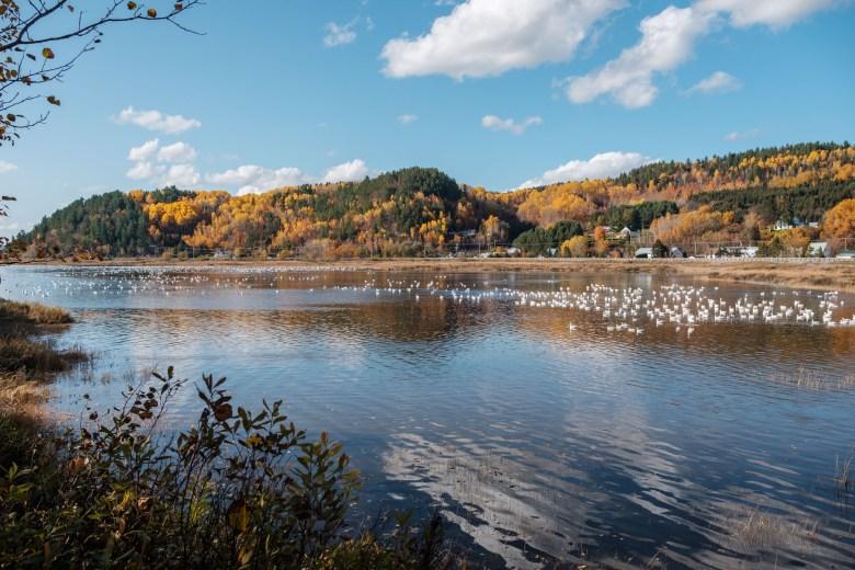 Canada Saguenay 43