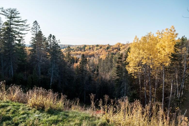 Canada Saguenay 45