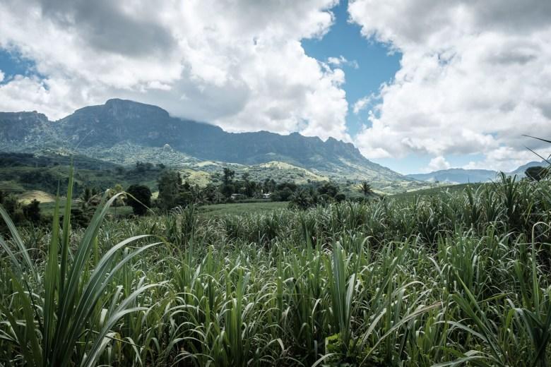 Fiji Nadi 09