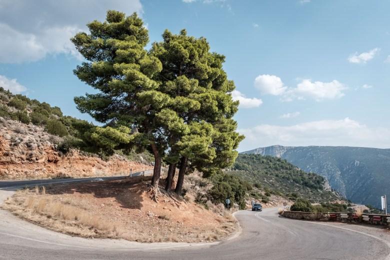 Greece Delphi 08
