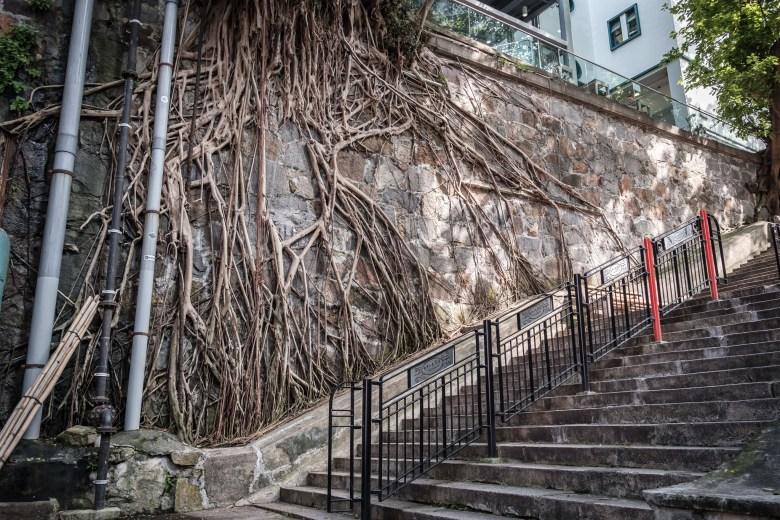 Hong Kong HK Island 43