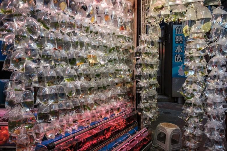 Hong Kong Kowloon 120