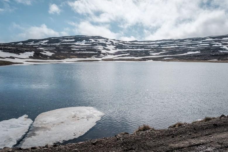 Iceland Westfjords 17