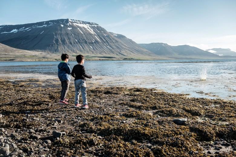 Iceland Westfjords 53