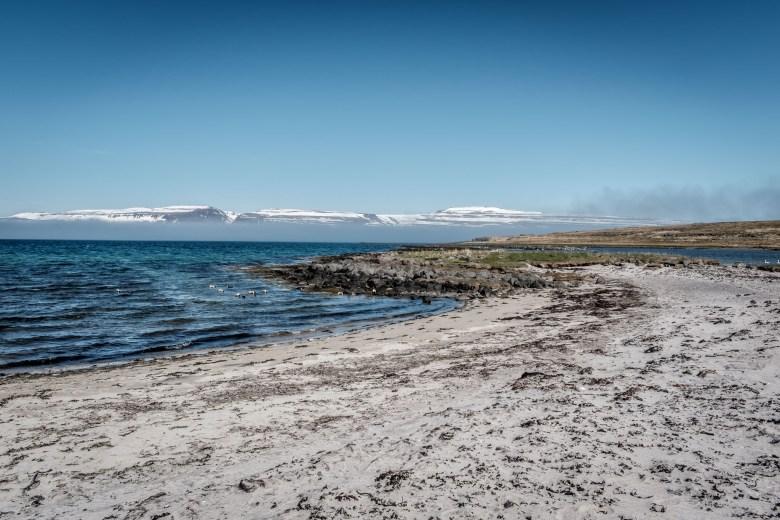 Iceland Westfjords 65