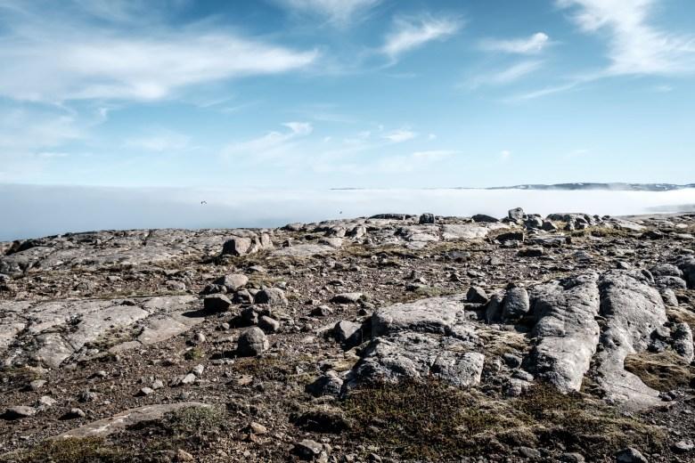 Iceland Westfjords 75