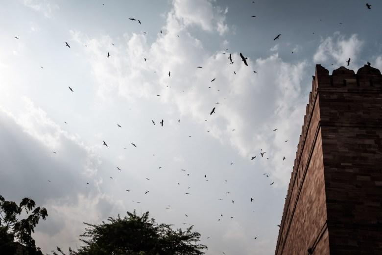 India Jodhpur 29